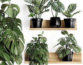 Plant set wall decor vertical garden 403 Monstera 3D model