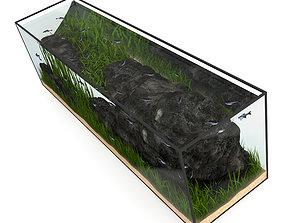 3D model Large Rectangular Aquarium