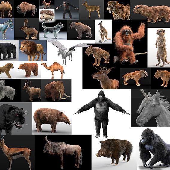 36 hair fur rigged animals in cinema 4d