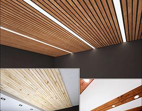 Wooden Ceiling Set 4 3D model