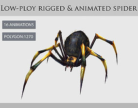 spider araneid arachnid animation 3D model
