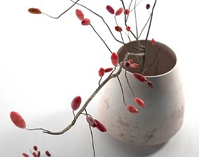 Barberry in Pot 3D model