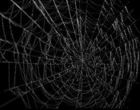3D model Spiderweb