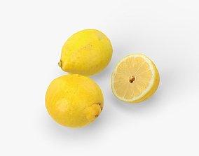 Lemons 3D model citrus