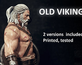 3D printable model OlD Viking