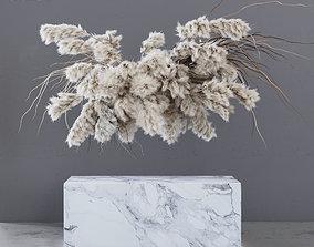 INDOOR DRIED FLOWERS pampas grass 3D asset