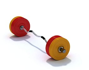 3D model Stainless Steel Barbell Weight Plates
