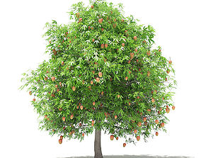 Mango Tree with Fruits 3D