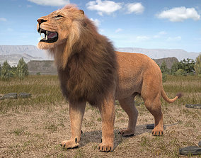 3D Lion The King hair and fur