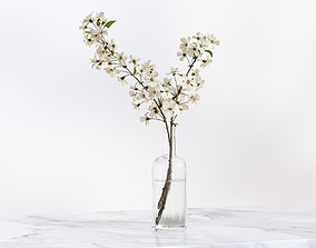 3D Twig with white flowers in a glass vase