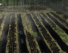 Traditional peat turf gathering kit 3D model