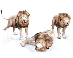 3D asset Lion Rigged