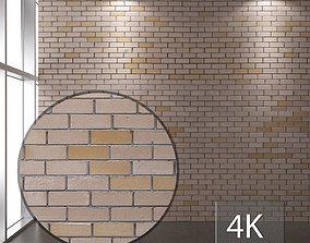 Brickwork 118 3D asset
