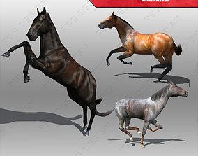 Horse Animated 3D asset