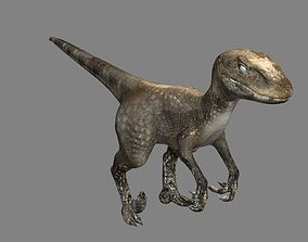 3D world Raptor