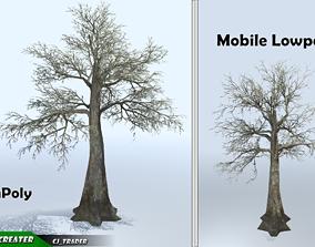 Kapok Bare Tree Set Mobile Lowpoly 3d model realtime