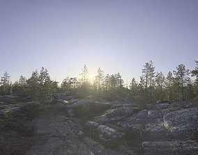 3D Nature HDRI - Midsummer Rock