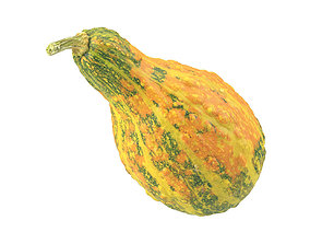 Photorealistic Decorative Gourd 3D Scan grocery