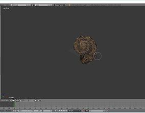 shell Shell 3D
