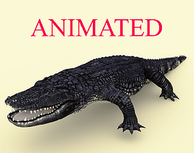 Realistic Animated Alligator-Rigged 3D asset
