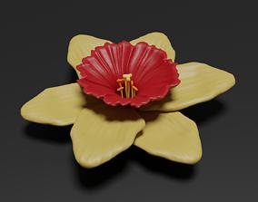 Narcissus 3D garden