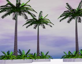 Low Poly Palm Tree 3D asset