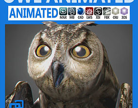 3D model Animated Owl