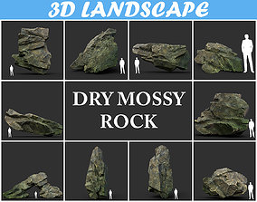 Low poly Dry Mossy Rock Formation Pack 200209 3D model