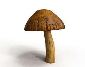 Leccinum Aurantiacum Mushroom 3D asset