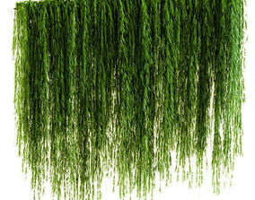 A wall of drooping plant branches 3D model