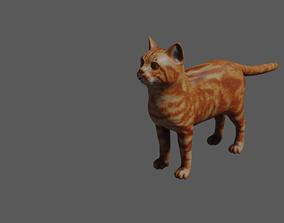 animated cat 3d model