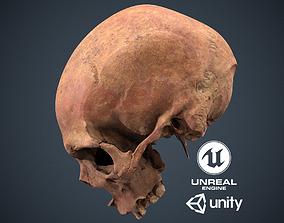 3D asset Real Human Skull