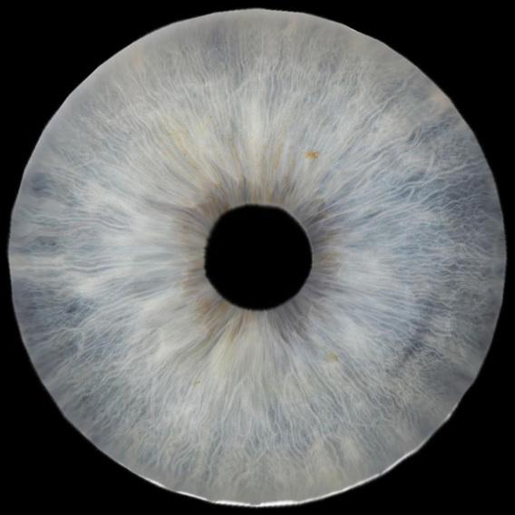 Eye_03