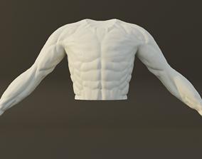 3D Man Torso - High Polygon Model
