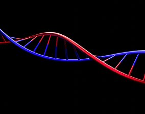 3D free DNA