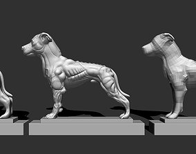 Pitbull 3 models for printing