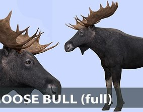 3D model Moose bull