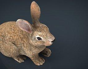 3D model realtime Rabbit