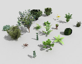 3D model low poly plants collection