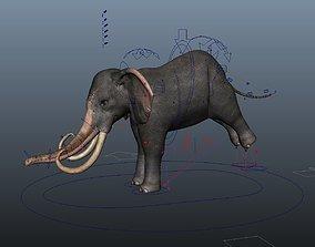 3D model Asiatic Elephant Rig