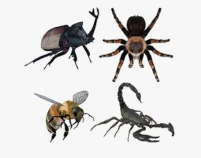 3D Insects Pack 2