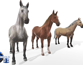 animated Gameready Horse Rigged Animated Lowpoly 3D Model