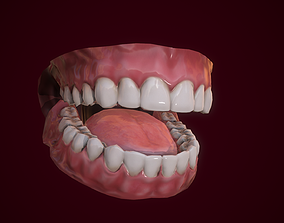 3D model rigged Mouth Teeth for Game Character