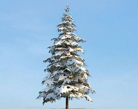3D model Snow Covered Pine Tree