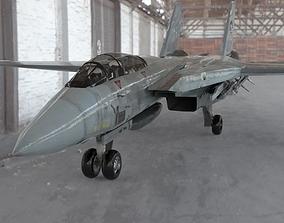 F 14 Tomcat for Poser 3D