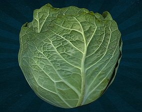 3D model FOOD-0012 Cabbage