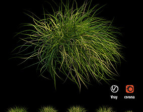 Grass collection 03 3D model