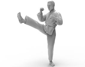 karate Front kick 3D print model