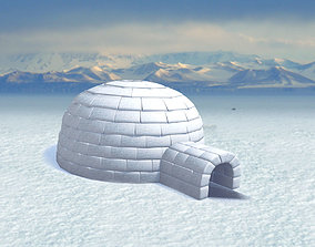 3D model Igloo cupola
