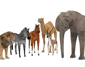 3D model VR / AR ready wildlife animals
